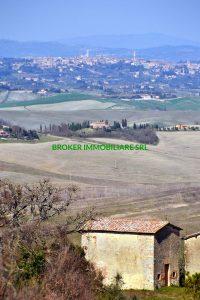 Stine Alte cappella e Siena